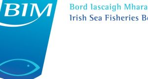 Bord Iascaigh Mhara (BIM) says that aquaculture will be central to its new five-year plan for Ireland's seafood sector which aims to meet a target of €1 billion in sales and 1200 jobs by 2017.