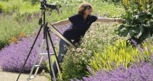 Andrea Jones photographing the gardens at Ballyfin House, Co Laois. Photograph: Richard Johnston