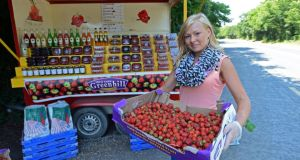 Vilma Leimonaite  from Navan with fruit from Greenhill Fruit Farm, for sale on the roadside near Leixlip, Co Kildare.  Photograph: Eric Luke