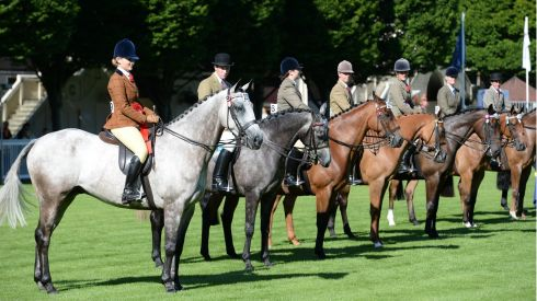 Participants line up for the Small Riding Horse Event during the opening day of the Discover Ireland Dublin Horse Show.