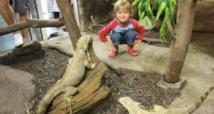 You can get up close and personal with the animals in the Reptile Village in Gowran, Co Kilkenny