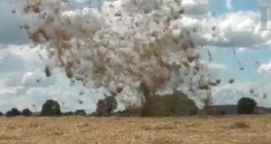 Freelance cameraman Martin Cavanagh captured this  dust devil on video in Co Carlow yesterday.