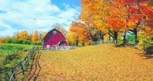 Seasonal colour in  Vermont. Photograph: Getty Images