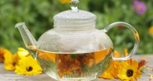 An infusion of Calendula flowers