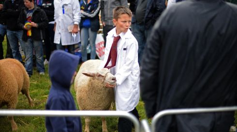 Arron McPhilips, from Ballyjamesduff showing at the young ram competition, at the 72nd Virginia Show, in Co. Cavan on Wednesday. Photo: Dara Mac Donaill / THE IRISH TIMES