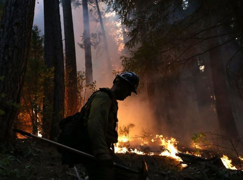 A firefighter from the Colorado based Long Canyon Fire Department monitors a back fire. Photograph: Justin Sullivan/Getty Images