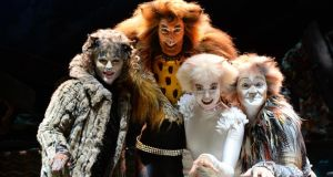 Terrific ensemble piece: Susan McFadden, Oliver Savile, Alicia Beck and Paul Monaghan in  Cats. Photograph: Dara Mac Dónaill