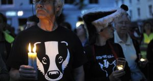 Protesters in Minehead in Britain during a candlelit vigil event against the badger cull organised by Somerset Badger Patrol. Photograph: Tim Ireland/PA Wire