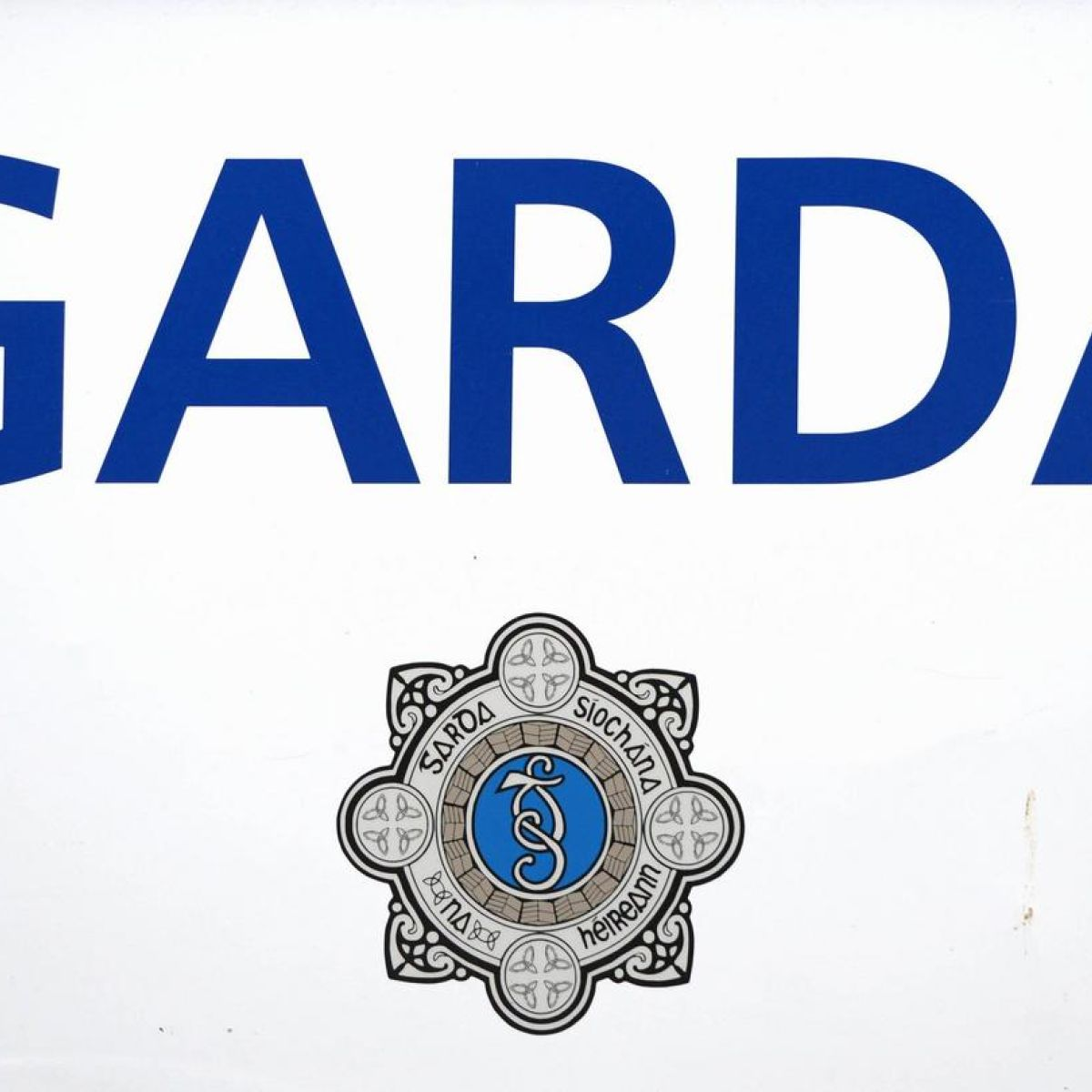 Garda unpaid for over three years fails in case at