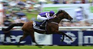 Coolmore's  St Nicholas Abbey has had a setback in his recovery.