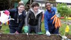 "Chef Donal Skehan planting seeds with Nicole Smyth (12) and Glen Dikilu (11), pupils of St. Thomas' Senior National School, Tallaght, Dublin, as part of the  GIY ""sow and grow"" campaign earlier this year. Photograph: Mark Stedman/Photocall Ireland"