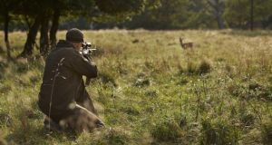 The deer hunter: Emma Meredith has been closely involved with the PSNI's new campaign against deer poaching.  Photograph: Klaus Vedfelt/Taxi/Getty