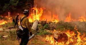 Firefighters  are still battling to contain the blaze in Yosemite National Park. Photograph: Mike McMillan/USFS handout