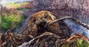 Dam beavers: the animals can change the environment. Illustration: Michael Viney
