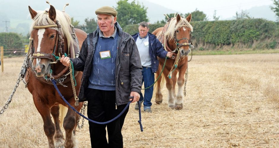 Ploughing a champion furrow