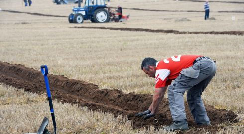 Enda McKeown, Louth, checking the furrow when competing in the Intermediate Conventional Class.  Photograph: Eric Luke/The Irish Times