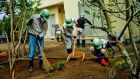 Workers remove  topsoil last month from  a garden behind a house  in Naraha, Japan, which was evacuated after the Fukushima nuclear disaster. Photograph: Tomas Munita/New York Times