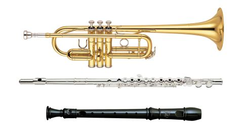 Yamaha trumpet, €399, The Sound Shop, Drogheda. Trevor James 10X flute, €417.21 (incl p+p) gear4music.ie Suzuki Soprano SRE-505 recorder, €8.50, Waltons.
