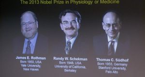 Images of James Rothman and Randy Schekman of the US, and German-born researcher Thomas Sudhof are projected on a screen, in Stockholm, Sweden, after they were announced as the winners of the 2013 Nobel Prize in medicine.