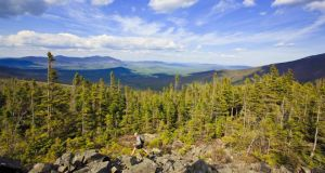 Appalachian Trail: this historic route is more than 30,000km long. Photograph: Getty