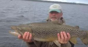 Galway hooker: Toby Bradshaw from Galway with a  trout of 5.5kg (12lb) caught on Lough Sheelin on a Green Peter .