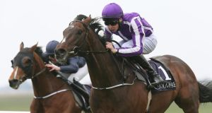 Camelot, seen here being ridden by Joseph O'Brien, has been retired. Photograph: Lorraine O'Sullivan/Inpho