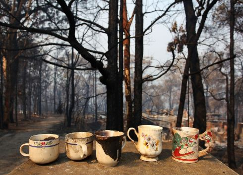 Tea cups sit on a letterbox at a home destroyed by bushfire. Photograph: Lisa Maree Williams/Getty Images