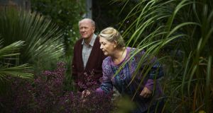 Babylon, Buncrana: Niall Buggy and Barbara Brennan in The Hanging Gardens. Photograph: Ros Kavanagh
