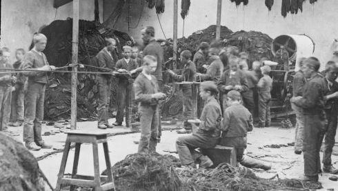 Shaven-headed boys mending fishing nets at the piscatorial school in Baltimore, Co Cork. Photograph: National Library of Ireland