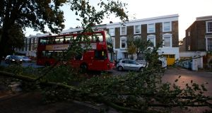 A bus travels past fallen trees in Islington, north London, after the St Jude storm swept through southern parts of Britain. Photograph: Olivia Harris/Reuters