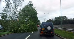 A fallen tree block the A12 Newbury Park, London, as commuters face rush-hour chaos this morning as they wake up to the impact of the worst storm in years. Photograph: Sean Dempsey/PA Wire
