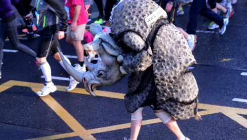 Paul Cudderford dresed as a rhino. Photograph: Cyril Byrne/The Irish Times