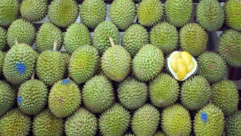 "Durian (pungent fruit, southeast Asia) Banned from public transport, hotels and public places in many southeast Asian cities because of its incredibly strong smell , the ""king of fruits"" has a thorny skin that covers a yellow-coloured flesh. Prized as a delicacy in both sweet and savoury dishes, its flesh is said to have a custardy taste, though detractors say the smell of rotting flesh slightly ruins the experience."