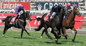Fiorente wins the Melbourne Cup from  Red Cadeaux, with  Irish-trained Simenon (left) back in fourth. Photograph: Mal Fairclough/AP