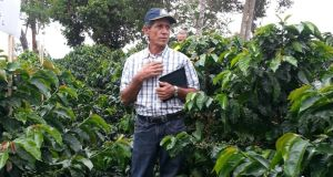 Colombian Coffee farmer Jorge  Garcés