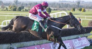 Tofino Bay: goes for back-to-back victories in Sunday's highlight at Navan, the €100,000 Ladbrokes Troytown Chase.