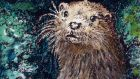 Inspiration for a poet: the otter, or Lutra lutra. Illustration: Michael Viney