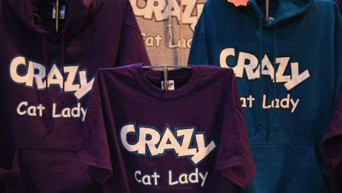And this is the craziest of the cat merchandise to be found. Possibly. Photograph: Matt Cardy/Getty Images