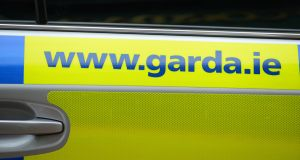 Gardaí used a Taser gun to subdue a man during a siege in Co Laois.