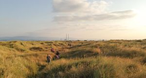 Art world: Brendan Sayers leads an orchid hunt on Bull Island. Photograph: Seán O'Sullivan