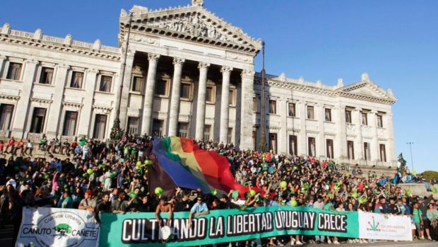 "People hold a banner reading ""Cultivating the freedom Uruguay grows"", during the so-called ""Last demonstration with illegal marijuana"" in front of the Congress building in Montevideo. Photograph: Andres Stapff/Reuters"