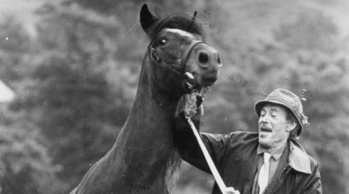 The actor with his colt, Dr Slattery, at the Connemara Pony Show in August 1985. Photograph : Peter Thursfield/The Irish Times