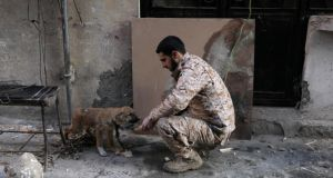 A Free Syrian Army fighter plays with a dog along a street in Deir al-Zor. The Syrian government excluded the largely rebel-held province  - where polio broke out this year - from a 2012 vaccination campaign. Photograph: Khalil Ashawi/Reuters.