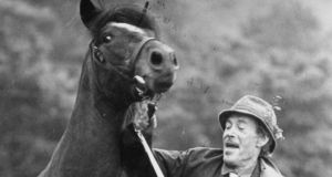 Peter O'Toole with his colt, Dr Slattery, at the Connemara Pony Show in Clifden, in 1985. Photograph: Peter Thursfield
