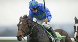 Hurricane Fly: May take on Our Conor and Jezki. Photograph: Morgan Treacy/Inpho