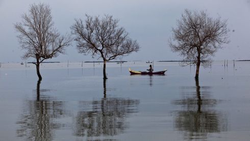 A fisherman passes near dead trees standing in flood waters from rising sea levels in Bedono village in Demak, Central Java, Indonesia. Photograph: Ulet Ifansasti/Getty Images