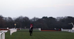 Sprinter Sacre ridden by Barry Geraghty after pulling up during the williamhill.com Desert Orchid Steeple Chase during day two of the William Hill Winter Festival at Kempton Park.