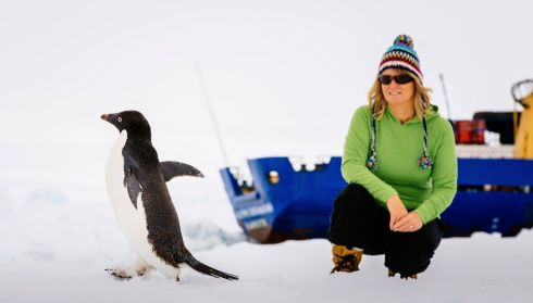 Barbara Tucker, a passenger aboard the trapped ship MV Akademik Shokalskiy, observes an Adelie penguin on the ice. Photograph: Andrew Peacock/Reuters