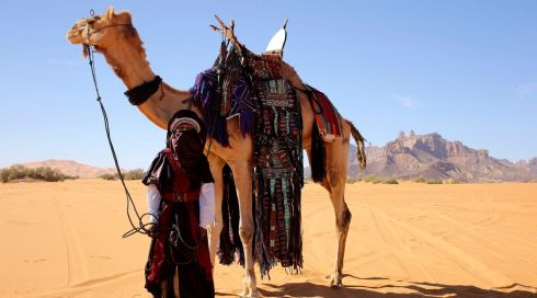 A Tuareg boy stands next to a camel in the desert during the 19th Ghat Festival of Culture and Tourism. Photograph: Esam Omran Al-Fetori/Reuters