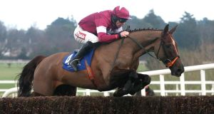 Last Instalment winning the Dr PJ Moriarty Novice Chase in 2012 befoe his long-term injury.